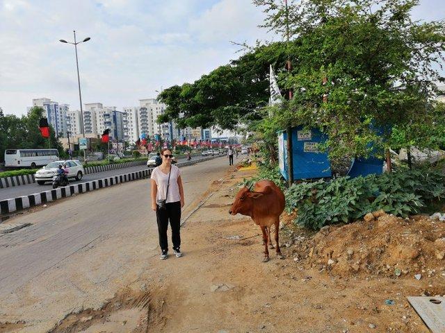 INTEGU - Chennai