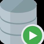 INTEGU - sql-developer-icon