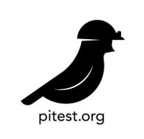 Pitest-icon - INTEGU-Mutation-testing